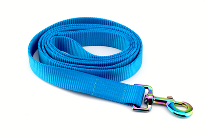Nylon Webbing Leash - Azure Blue