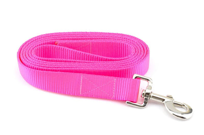 Nylon Webbing Leash - Neon Pink