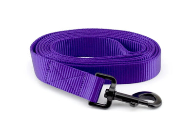 Nylon Webbing Leash - Purple