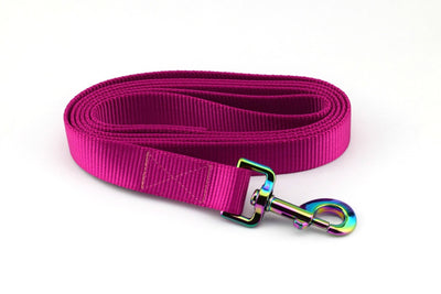 Nylon Webbing Leash - Raspberry