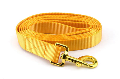 Webbing Leash - Goldenrod