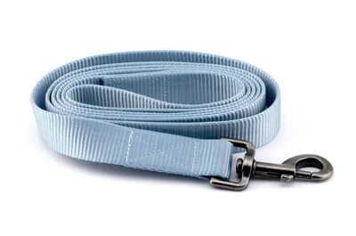 Nylon Webbing Leash - Light Blue
