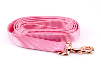 Nylon Webbing Leash - Light Pink
