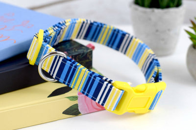 Striped Dog Collar - Blue, Yellow, White