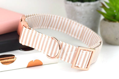 Dog Collar - Metallic Rose Gold and White Stripe