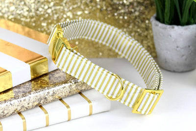 Dog Collar - Metallic Yellow Gold and White Stripe
