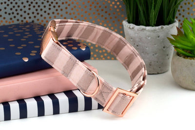 Painted Stripe Dog Collar - Blush & Rose Gold
