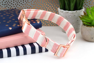 Dog Collar - Pink and White Stripe