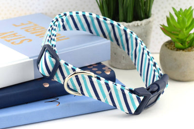 Striped Dog Collar - Navy, Aqua & White