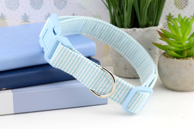 Dog Collar - Light Blue & Green Seersucker