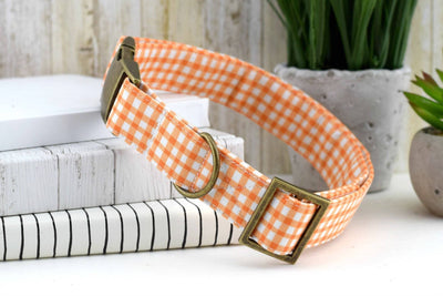 Painted Gingham Dog Collar - Orange & White