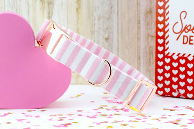 Striped Dog Collar - Light Pink & White