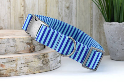 Striped Dog Collar - Royal & Light Blue