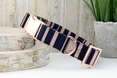Dog Collar - Rose Gold Metallic Stripe