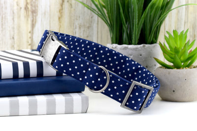 Dog Collar - Swiss Dot in Navy Blue Fashion Dog Collar