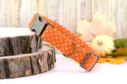 Dog Collar - Polka Dot Dog Collar