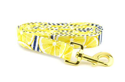 Lemon Fabric Dog Leash - Lemon Print with Navy Stripes Dog Leash