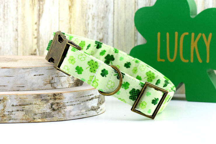 St Patrick's Day Dog Collar - Printed Shamrock on Green