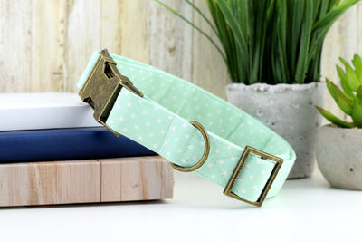 Polka Dot Dog Collar - Mint & White Fabric Dog Collar
