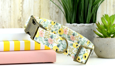 Primavera Rosa Floral Dog Collar - Cream