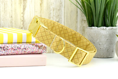 Waffle Cone Dog Collar ~ Ice Cream Cone Fabric Dog Collar ~ Summer Fashion Collar ~ Yellow Gold Metal Hardware