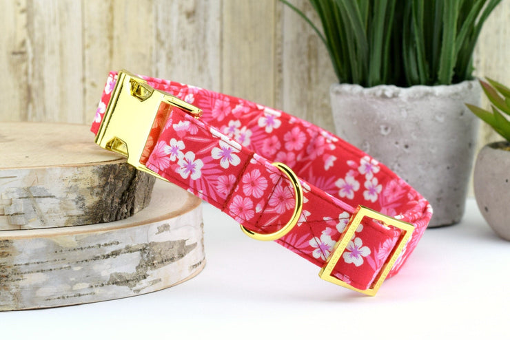 Tropical Hibiscus Dog Collar ~ Red & Pink ~ Tropical Fabric Dog Collar ~ Fashion Dog Collar ~ Yellow Gold Hardware ~ Sandy Paws Collar Co