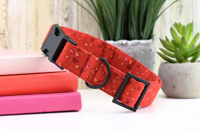 Sketched Heart Print Dog Collar - Red ~ Valentine's Day Print Fabric Dog Collar ~ Matte Black Metal Hardware - Sandy Paws Collar Co