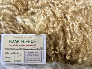 White Wensleydale Ewe Raw Fleece 1606