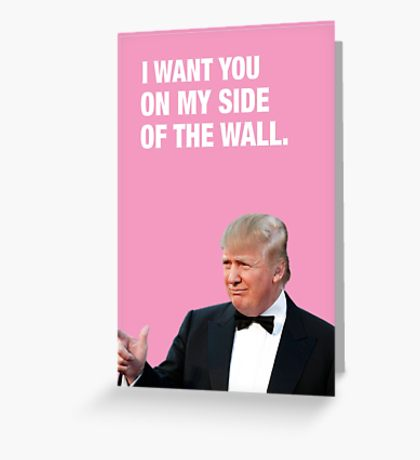 I Want You On My Side Of The Wall - Trump Valentine