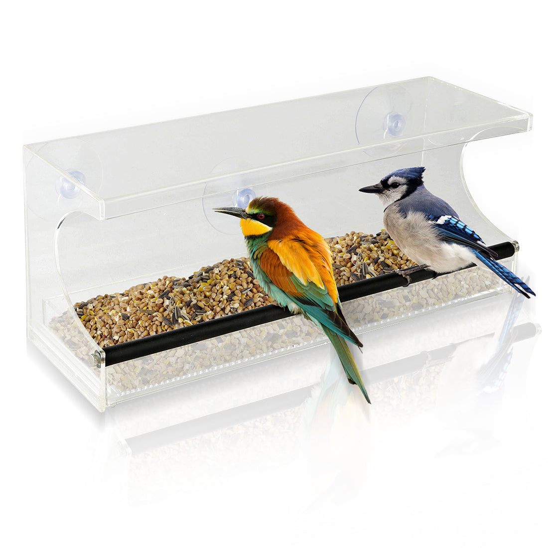 Window Bird Feeder - See-Through Acrylic - Clear, Removable Slide Out Tray - Drainage Holes Keep Bird Seed Fresh - 3 Suction Cups For Easy Mounting - Perfect for Adults, Kids, Pets, Home Bird Watching