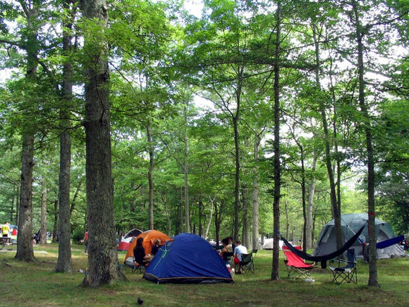 Kittatiny Campgrounds in New York