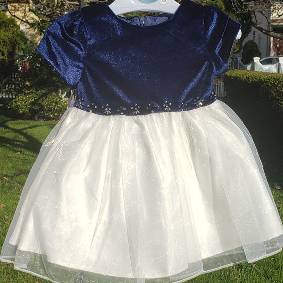 Navy Blue and Ivory Velvet Dress