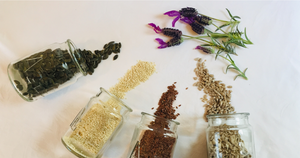 Seed cycling is an incredible way to support your body and balance hormones naturally