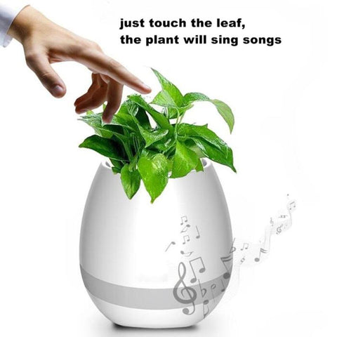 One-Of-A-Kind Singing Musical Indoor Plant Vase