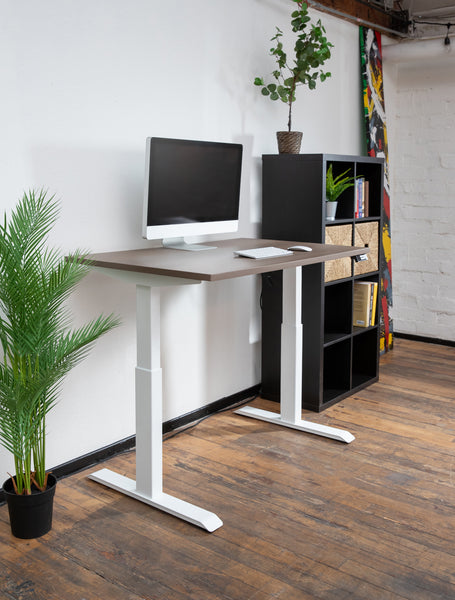 RISE Light Dual-Motor Desk