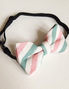 Sage + Blush Stripe Bow Tie