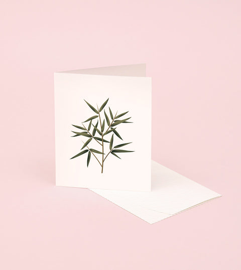 BOTANICAL SCENTED CARD – BAMBOO