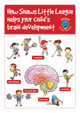 Shaws Little League and Brain Development