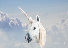 Unicorn Cloud Mask