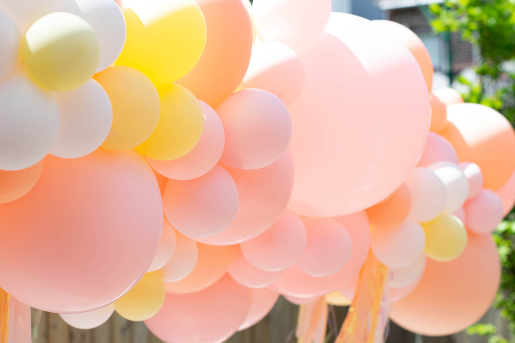 Party et Cie Balloon Garland My Blush Peony