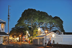 DON'T MISS THESE 10 COOL HAWAII NEIGHBORHOODS AND CHARMING TOWNS