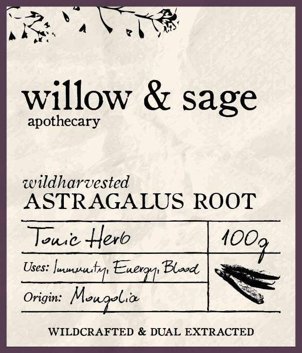 Astragalus Root - Willow and Sage Apothecary