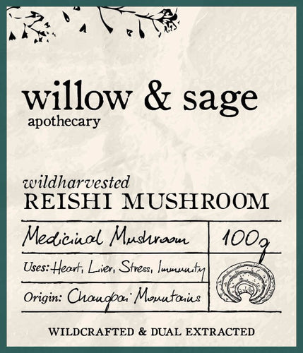 Reishi Mushroom - Willow and Sage Apothecary
