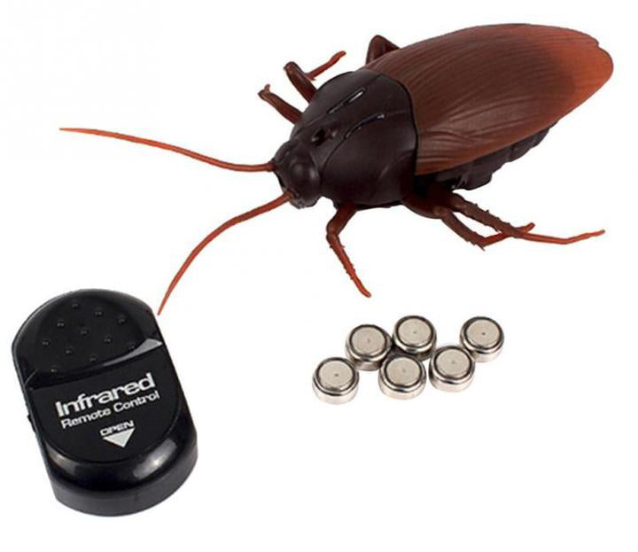 Remote Control Fake Cockroach