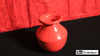 Lota Bowl Aluminum (Color) by Mr. Magic - Trick