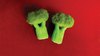 Sponge Broccoli (Set of Two) by Alexander May