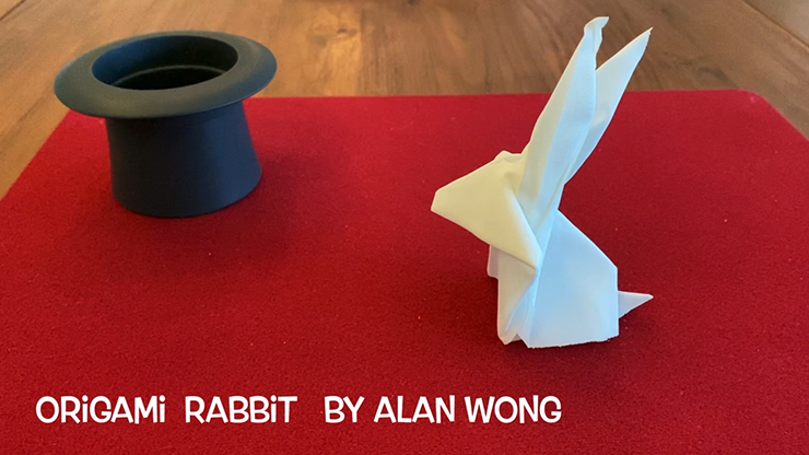 Origami Rabbit by Alan Wong