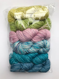Best Self MINI SKEIN KIT / fingering / single ply