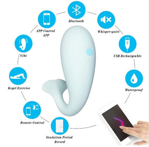 Monster Massager 8 frequency Remote Control uses HP App USB Charge Bluetooth