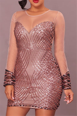 Net Yarn Sequins Splicing Sheer Dress